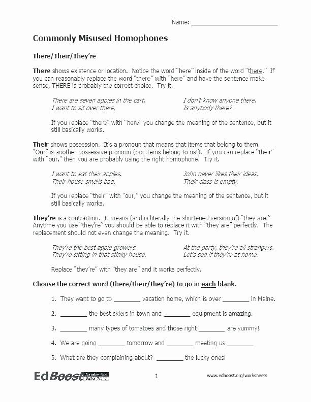 Homophones Worksheet High School Homonyms Worksheets