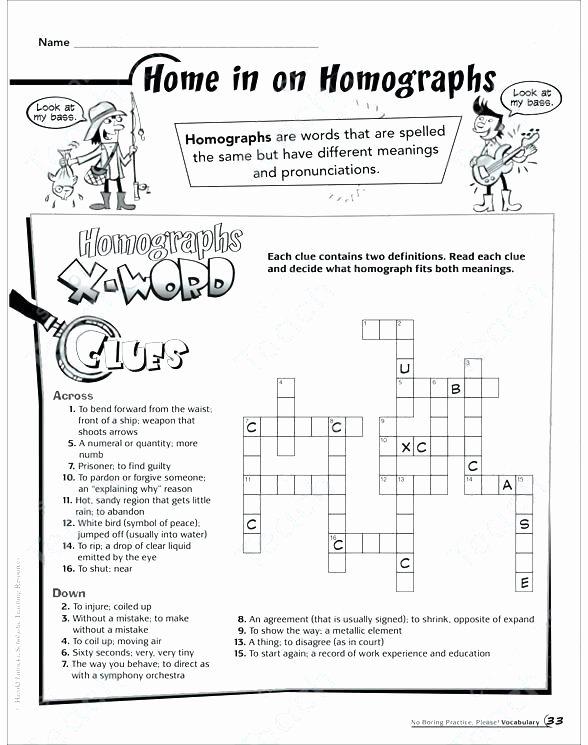 Homophones Worksheet High School Homonyms Worksheets Words Worksheet Suffixes Math Multiple