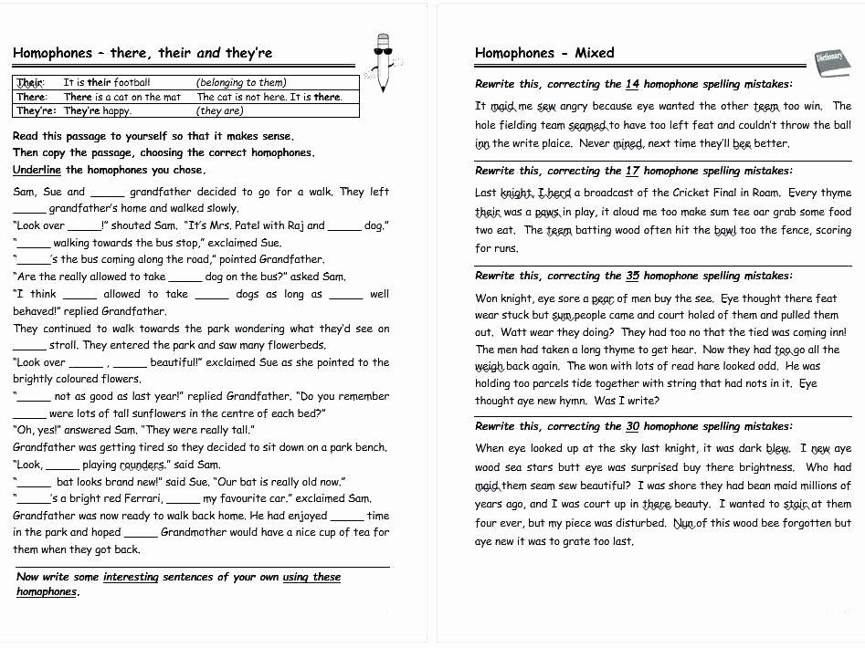 Homophones Worksheets 2nd Grade Printable Homophone Worksheets