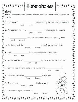 Homophones Worksheets for Grade 2 Printable Homophone Worksheets