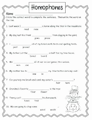 Homophones Worksheets for Grade 5 Homonyms Worksheets Middle School