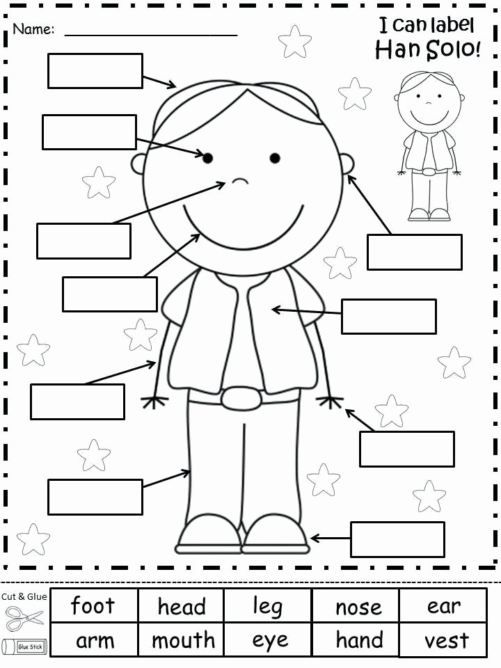 Human Body for Kids Worksheets Human Body Worksheets for Kids Worksheets for Spelling Human