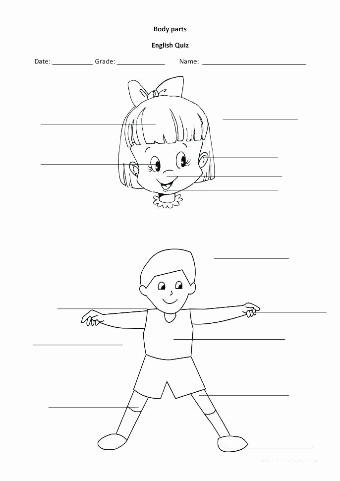 Human Body for Kids Worksheets Kindergarten Body Worksheets A Big Heart Coloring Page Human