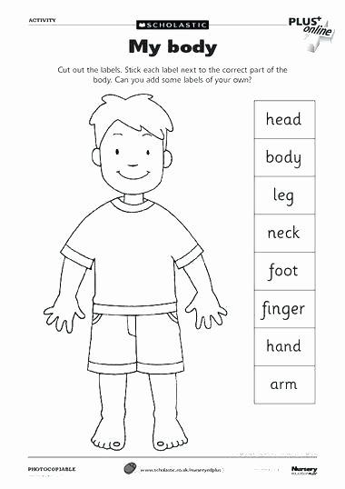 Human Body for Kids Worksheets Label the Skeleton Learning Anatomy Skeletal System Human