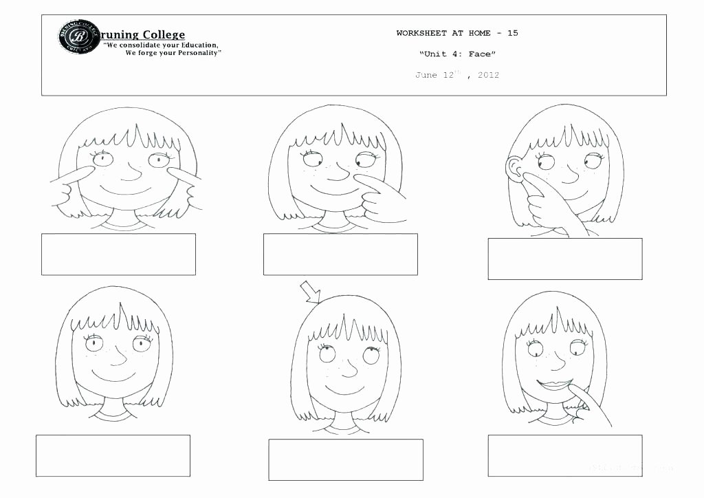 Human Body Labeling Worksheets Human Body Printable Worksheets