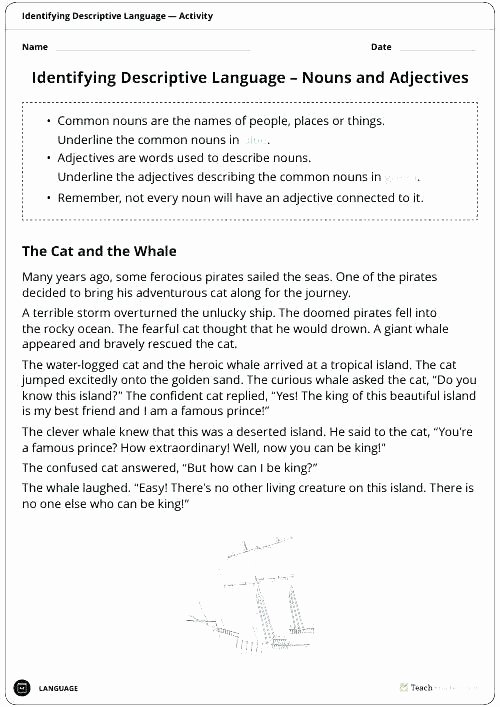 Identifying Nouns and Verbs Worksheets Nouns Pronouns and Adjectives Worksheets
