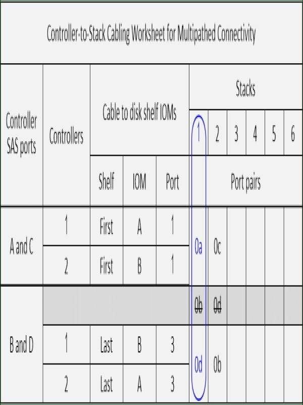 Inherited Traits Worksheet Inspirational Patterns Inheritance Worksheet