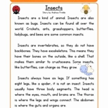 Insect Reading Comprehension Worksheets Insect Lessons First Grade