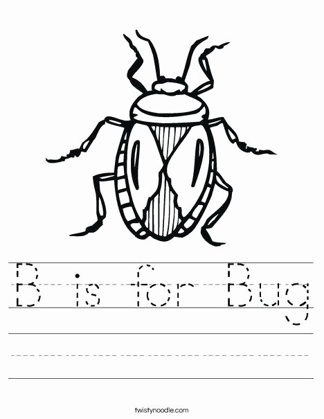 Insect Worksheets for First Grade Bug Worksheets