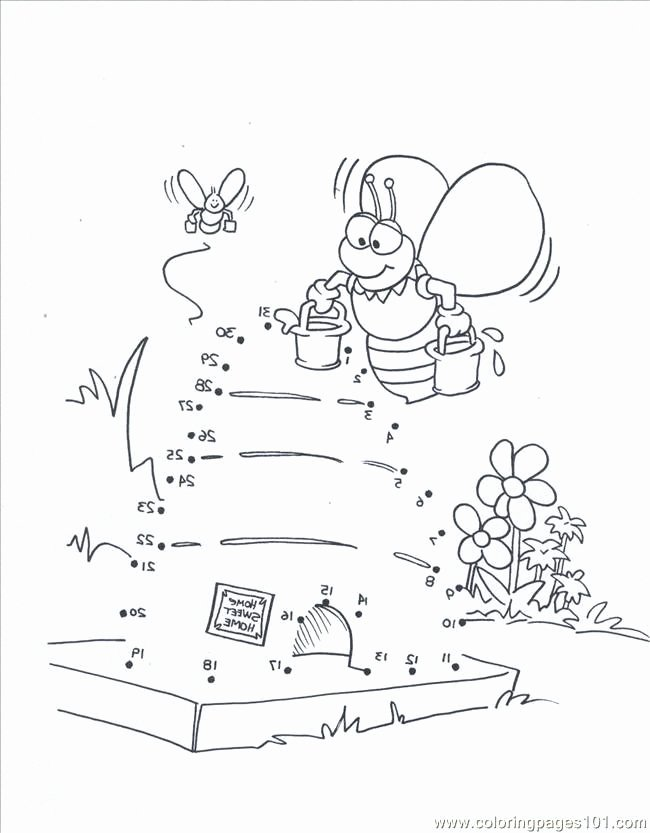 Insect Worksheets for First Grade Honey Bee Printable Worksheets