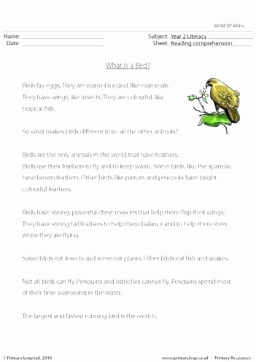 Insect Worksheets for First Grade Kindergarten Free Insects Worksheets Insect Worksheets for