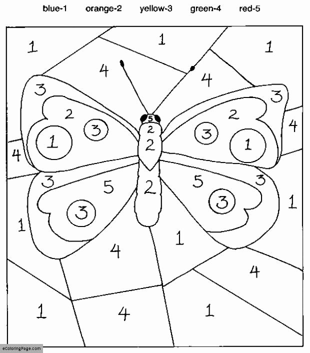 Insect Worksheets for Preschoolers Color by Numbers butterfly Coloring Pages for Kids Printable