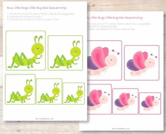 Insect Worksheets for Preschoolers Freebies Busy Little Bugs Page 19