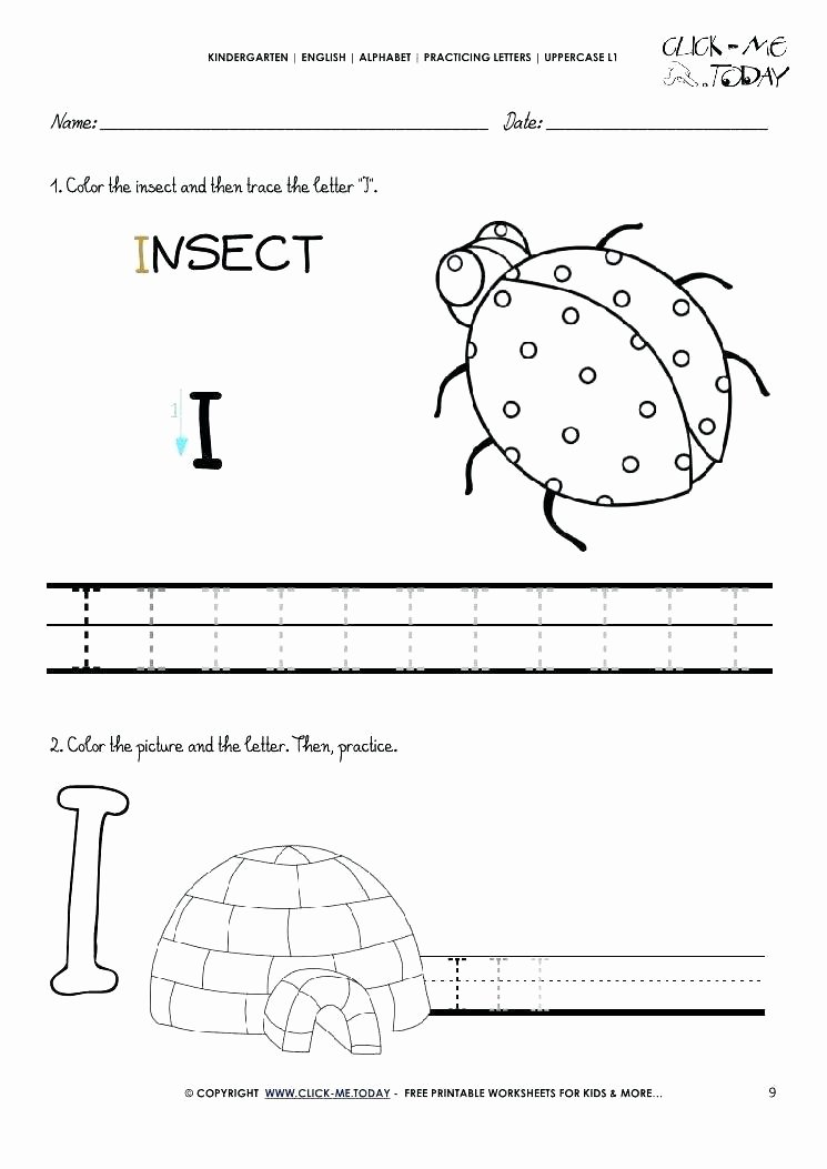 Insect Worksheets for Preschoolers Letter E Recognition Worksheets Printable What is A