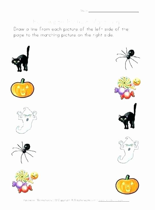 Insect Worksheets for Preschoolers Preschool Matching Worksheets