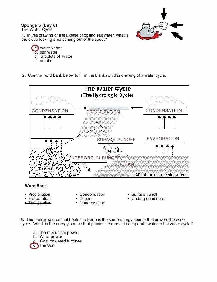 Integrated Science Cycles Worksheet Answers Inspirational Science Fill In the Blank Worksheets