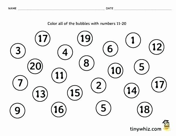 Kindergarten Math sorting Worksheets Back to School Kindergarten Worksheets Sped Free Pre K