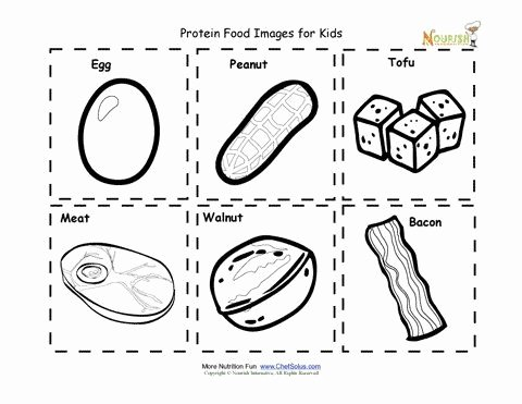 Kindergarten Nutrition Worksheets Protein Food Cards for Children Food Images for Kids to Cut