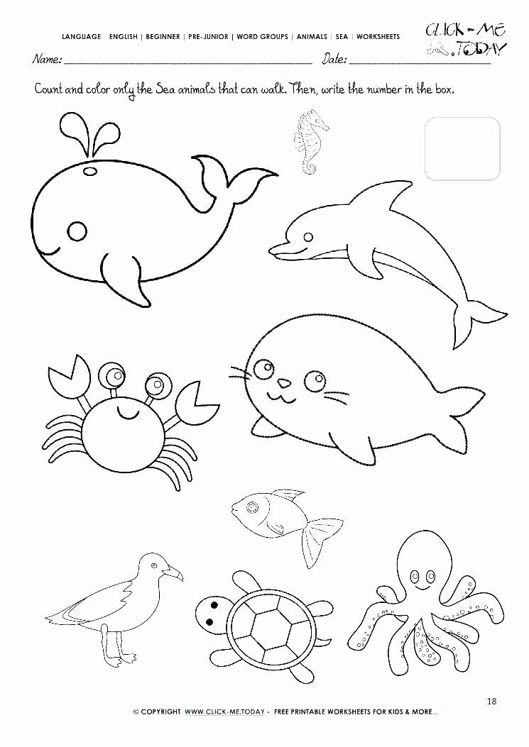 Kindergarten Ocean Worksheets Picture Activities Math Worksheets Kindergarten Free