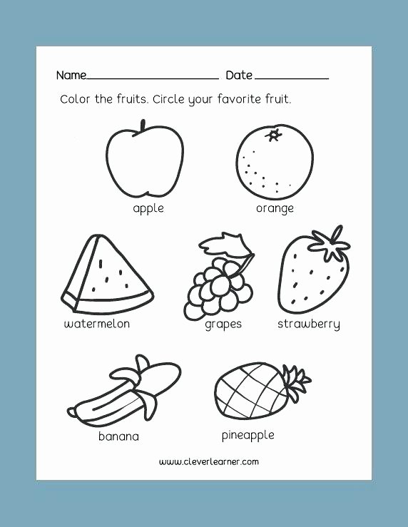 Kindergarten Science Worksheets Free Science Activity Worksheets