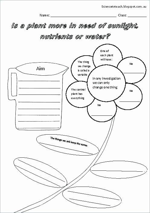 Kindergarten Science Worksheets Free Science Worksheets for Grade Grade Grade Kindergarten