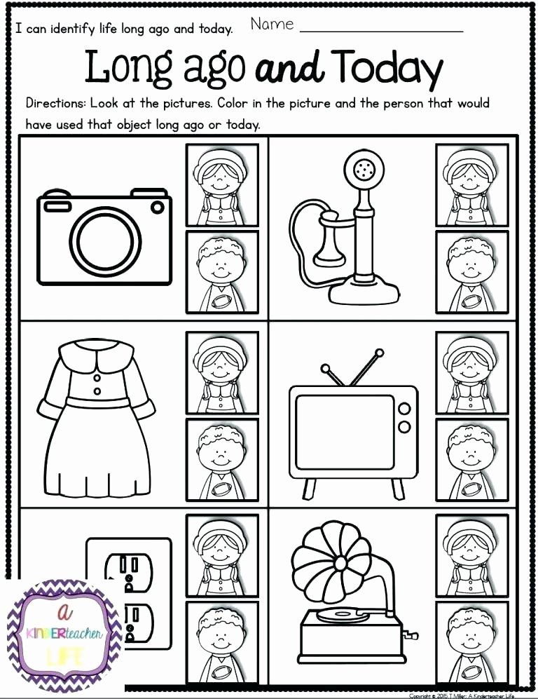 Kindergarten social Studies Worksheets Pdf Inspirational social Science Worksheets
