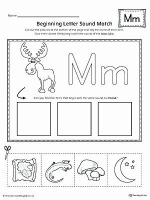 Letter G Worksheets Preschool Letter M Worksheets for Preschoolers Letter M Worksheets Fun