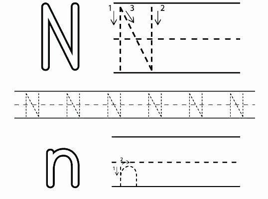 Letter N Worksheets for Kindergarten Letter N Worksheets Alphabet Letter Hunt Letter N Worksheet