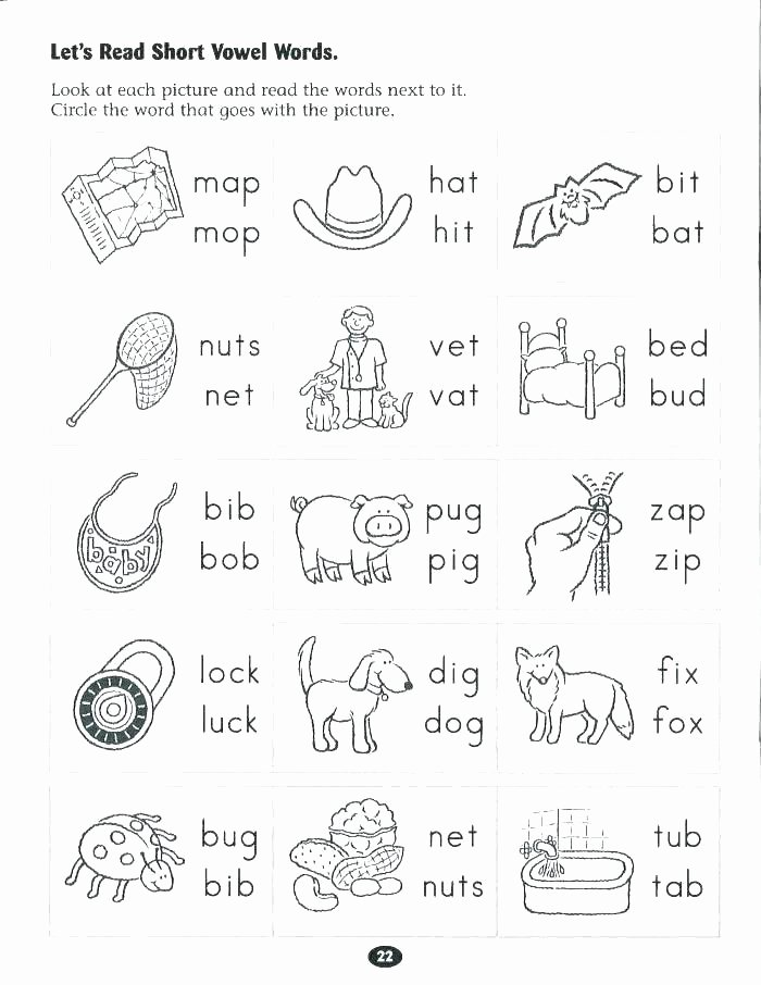 Letter N Worksheets Kindergarten Letter N Printable – Chromadolls