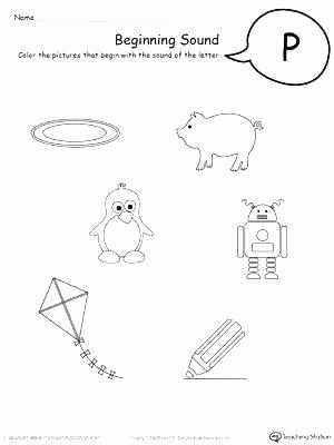 Letter P Preschool Worksheets B and D Worksheets for Kindergarten