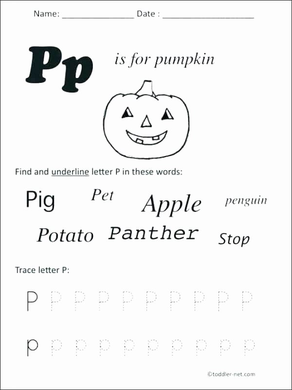 Letter P Preschool Worksheets P Worksheets for Kindergarten