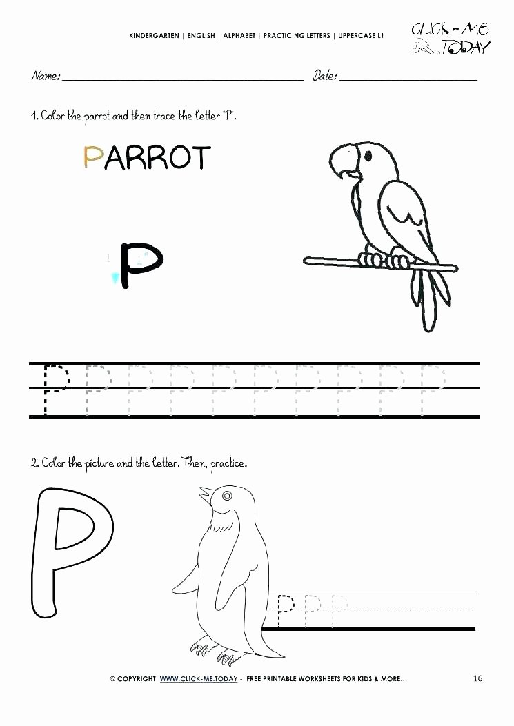 Letter P Tracing Worksheets Letter P Worksheets Free for Grade Reading Kindergarten