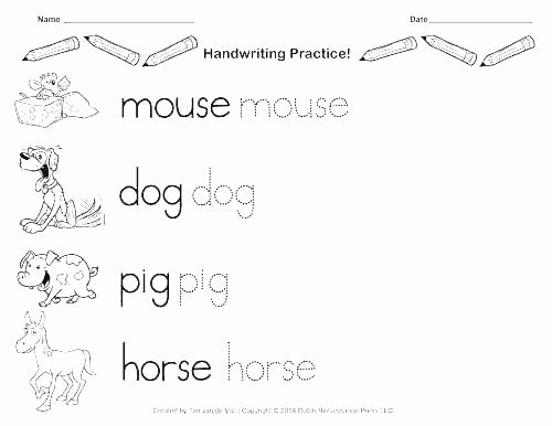 Letter P Tracing Worksheets Letter W Worksheets for Kindergarten