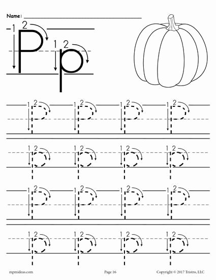 Letter P Worksheets for toddlers Free Printable Letter P Tracing Worksheet with Number and