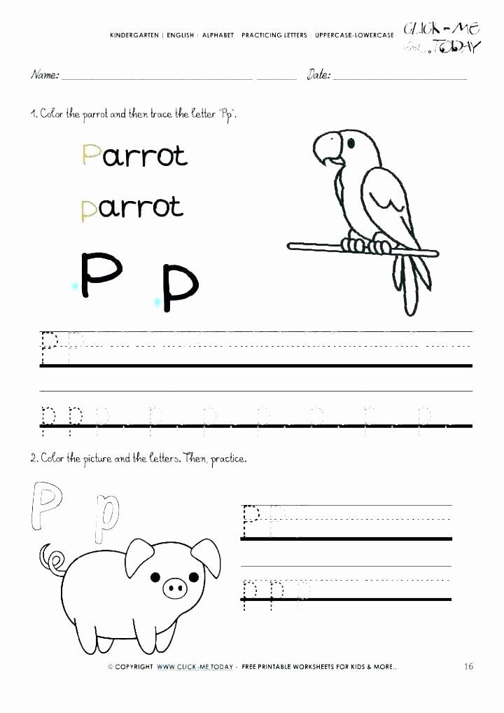 Letter P Worksheets Preschool Letter E Tracing Worksheets