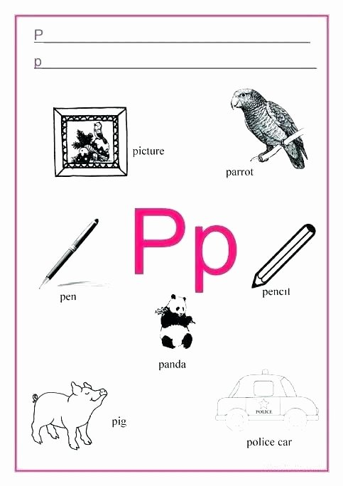 Letter P Worksheets Preschool Letter P Printable Worksheets