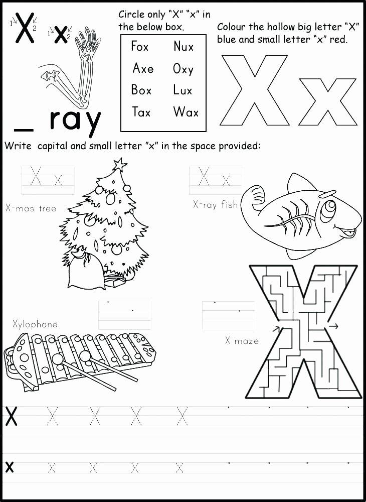 Letter X Worksheets for Kindergarten 1st Grade Alphabet Worksheets First Writing Patterns Letter