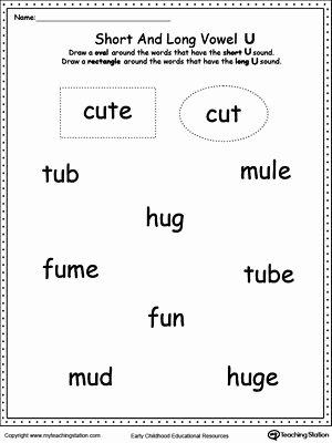 Long Vowels Worksheets First Grade Vowels Short or Long U sound Words Phonics