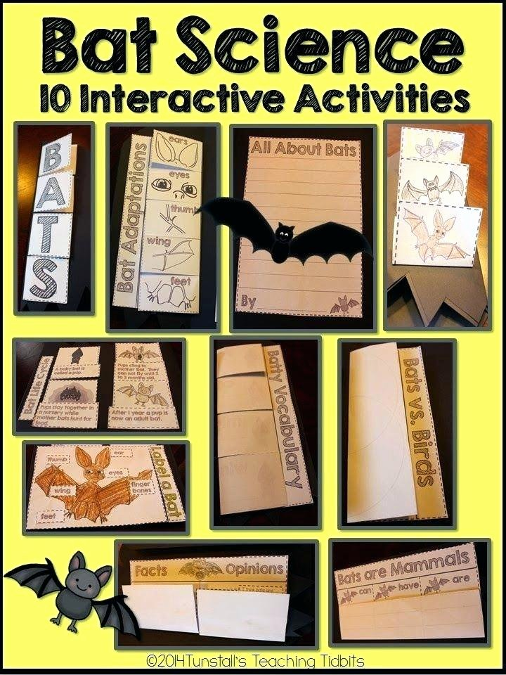Mammal Worksheets First Grade Mammals Worksheet Second Grade Mammal Facts Bat Glasses Free