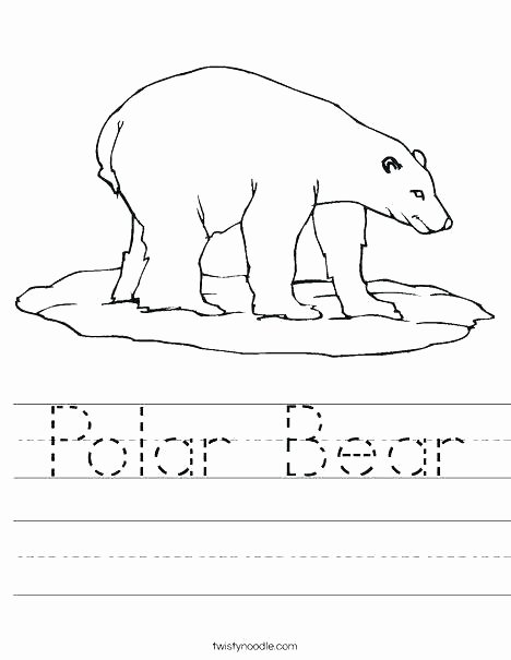 Mammal Worksheets First Grade Polar Bear Worksheets 1st Grade
