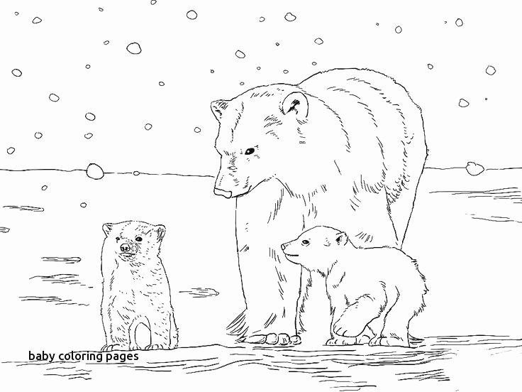 Mammal Worksheets for Kindergarten √ Triceratops Coloring Pages or Pokemon Worksheet Home