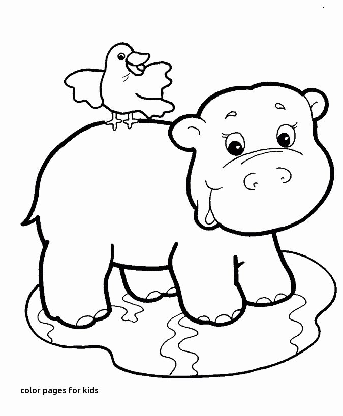 Mammal Worksheets for Kindergarten Kids Picture to Color Best Fun Coloring Pages Free Kids
