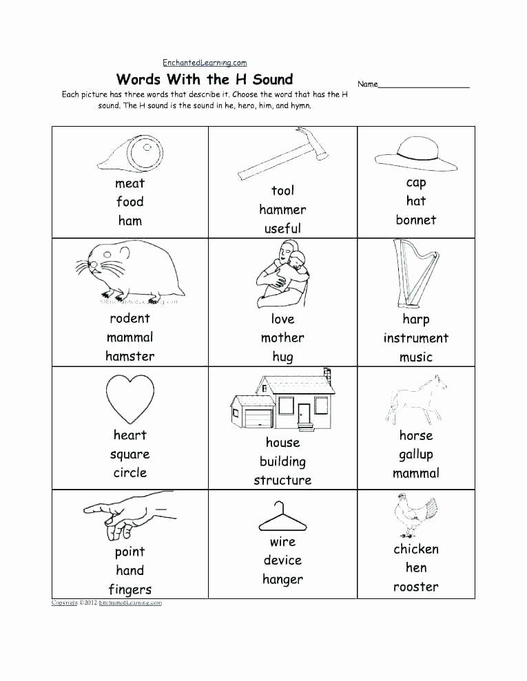 Mammal Worksheets for Kindergarten Kindergarten Curriculum Worksheets