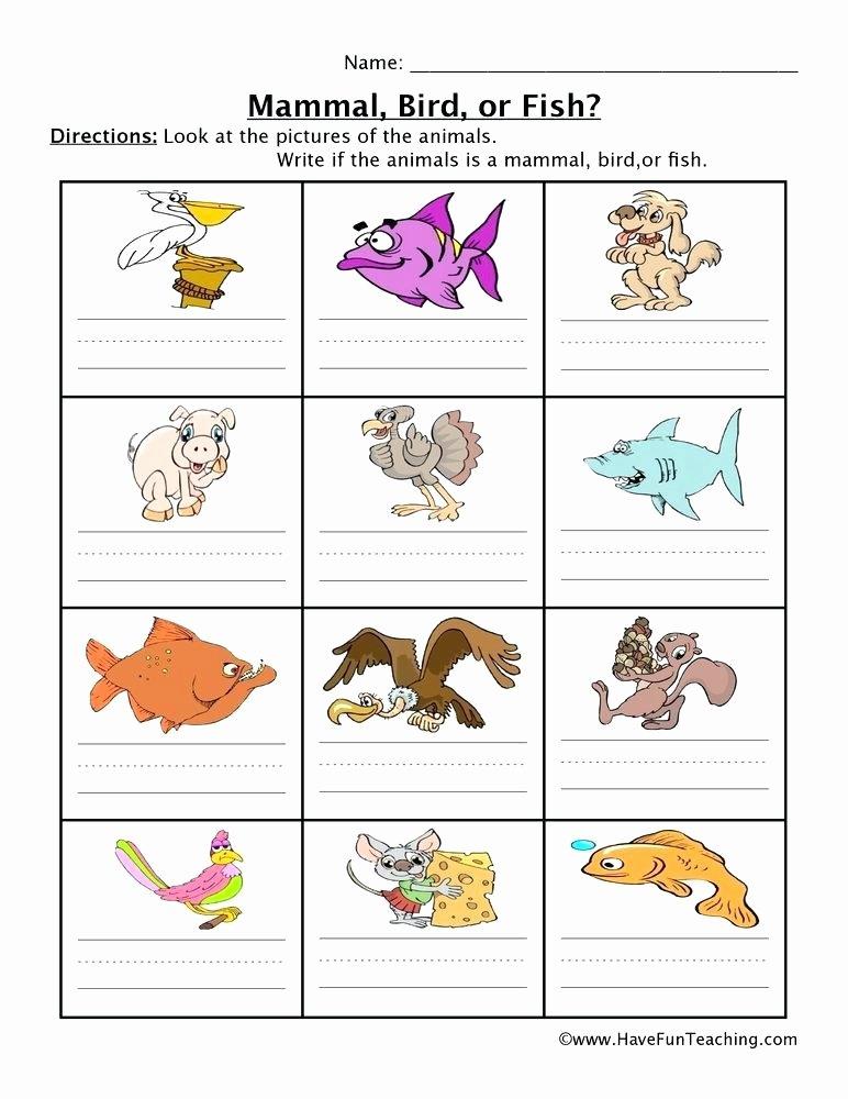 Mammals Worksheet First Grade Bird Worksheets for First Grade Walking Bird Worksheet Left