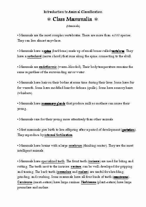 Mammals Worksheet First Grade Kindergarten Personal Pronouns Worksheet Level Learn