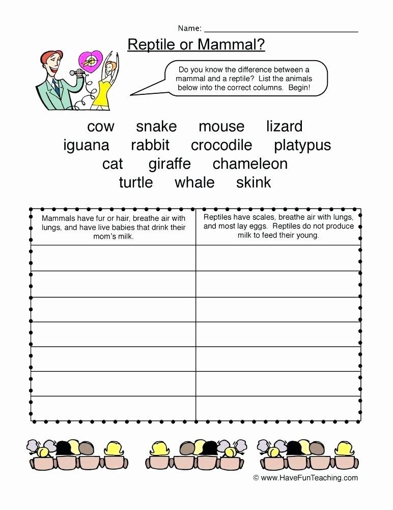 Mammals Worksheet First Grade Mammal Vs Reptile Worksheet Reptiles Worksheets for