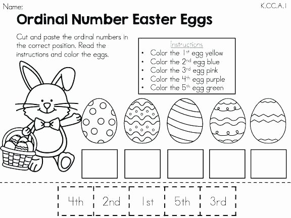 Mammals Worksheet First Grade Pet Worksheets for Grade 1