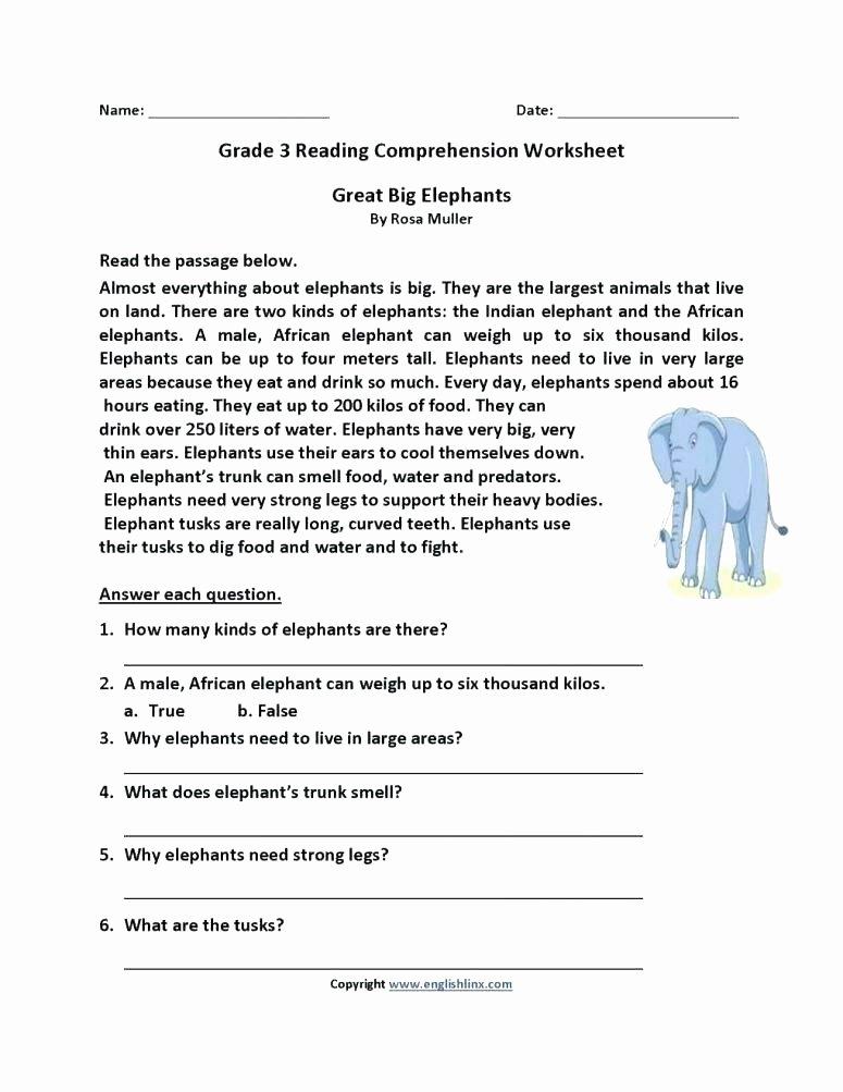 Mammals Worksheets for 2nd Grade Free Printable Grade Reading Prehension Sheets and