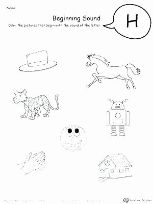 Mammals Worksheets for 2nd Grade Insect Worksheets for 2nd Grade