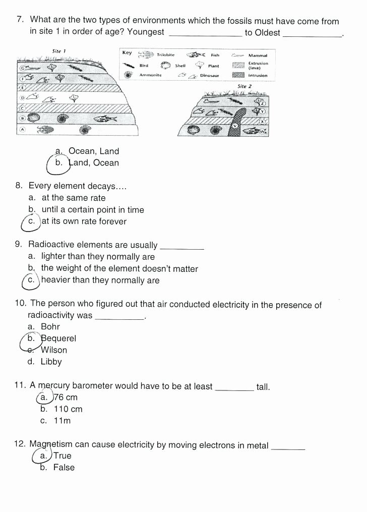 Mammals Worksheets for 2nd Grade Matter Worksheets 2nd Grade